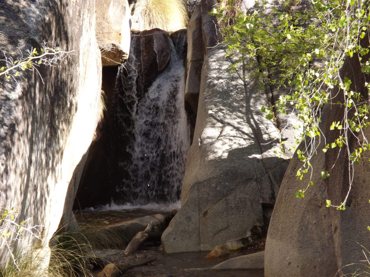 This secret, hidden waterfall in Madera Canyon may be the most accessible in Arizona