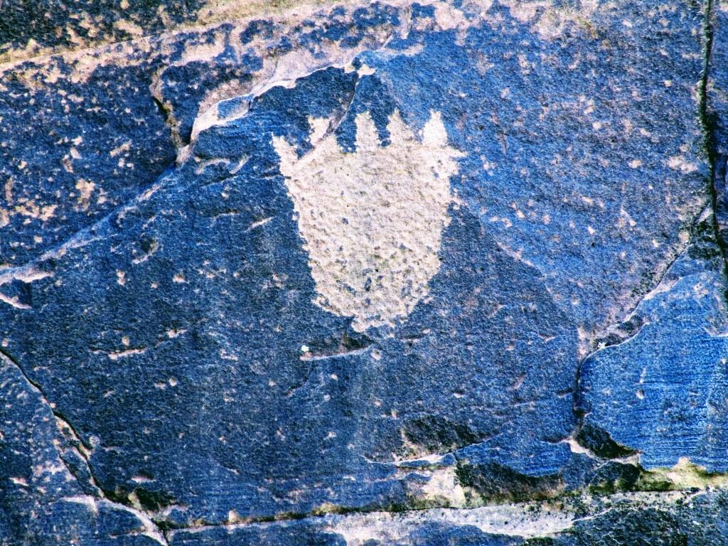 Bear paw petroglyph at Rock Art Ranch