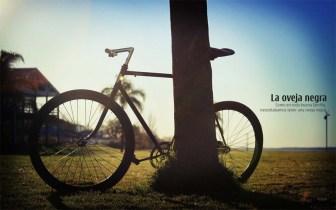 Bici tipo fixie reciclada a negro, por Monochrome