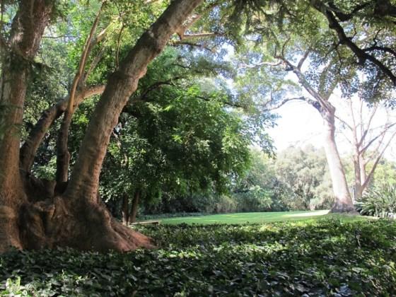 Jardines de la entrada de Villa Ocampo. Foto.