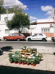 Vereda de Sonyando en Villa Devoto. Foto