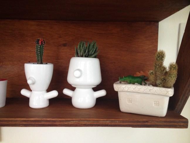 Repisas de Paraná Vivero con mini macetas de Verde Cactus. Foto