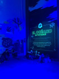 Ingreso a la muestra en la Sala Yaguareté