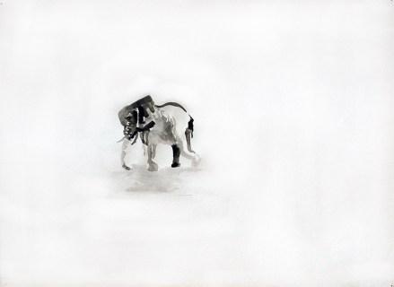 Elefant 2