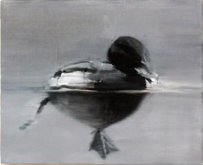 Ente-53