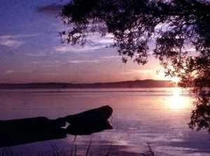 At close of day at Tuggerh Lakes. By Reginald J. Dunkley
