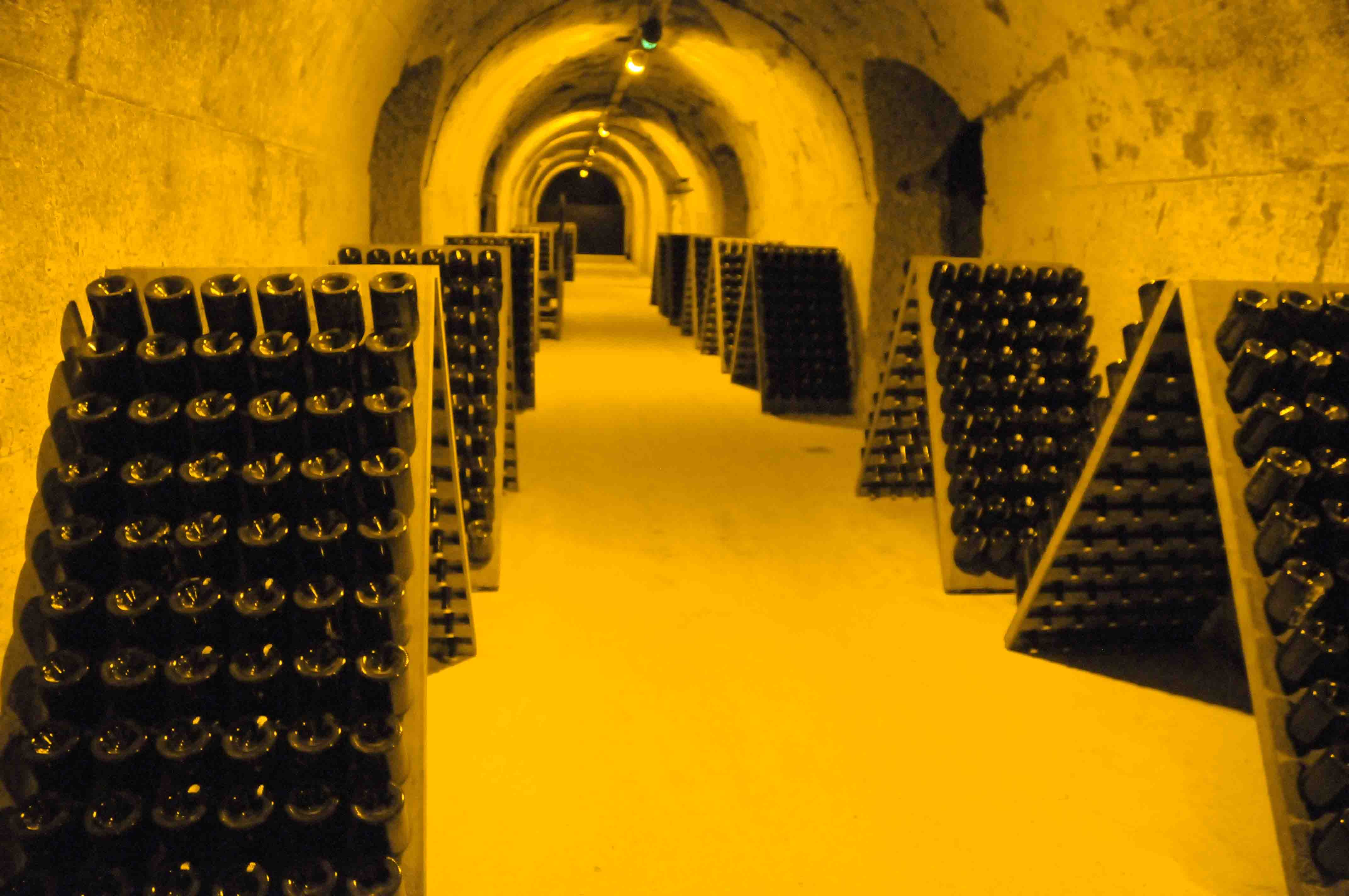 FRANCE - Champagne- 51  Reims: les crayres des Champagnes Taittinger