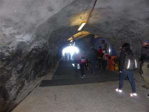 Observation tunnel