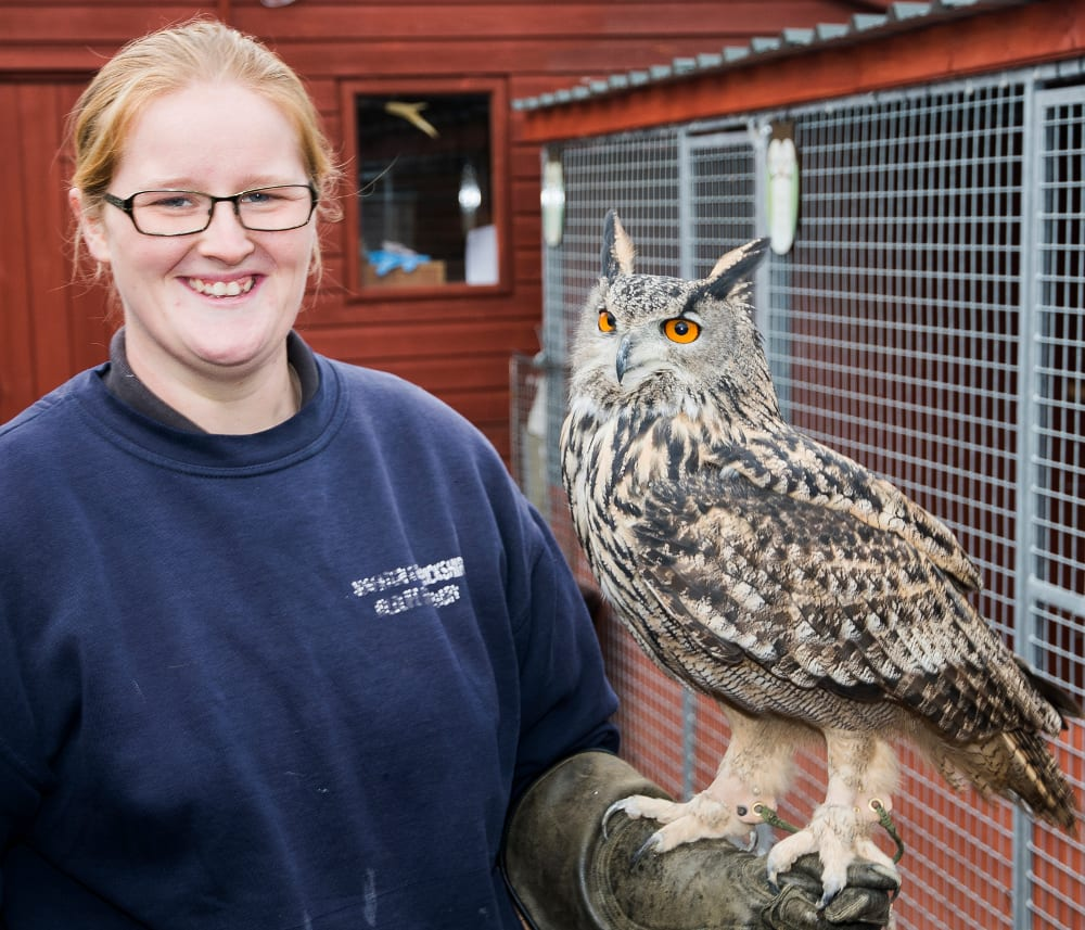 Warwickshire Wildlife Sanctuary, Catherine with European Eagle Owl