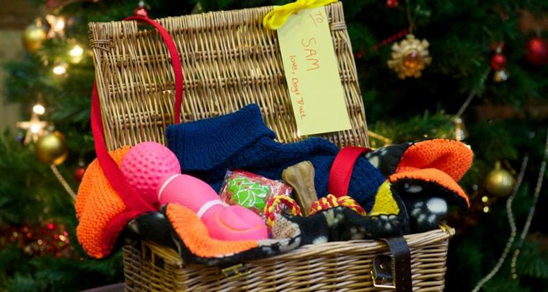Dogs-Trust-Hope-Project--christmas-hamper