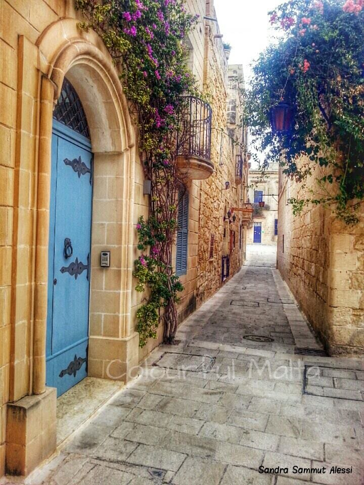 Picturesque and colourful Mdina alley.