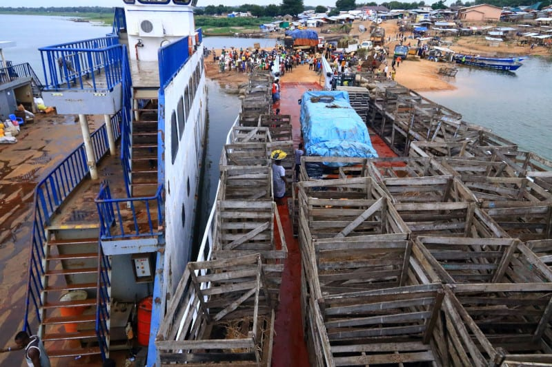 Rows of wooden crates used to transport the yams
