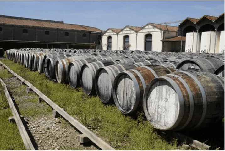Sunny resting period for the wine casks