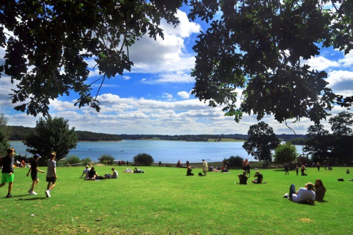 View of Bewl Reservoir from the picnic area beneath the cafe