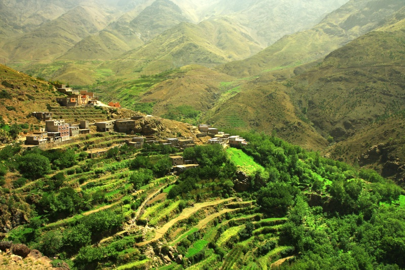 The terraced gardens at Ouanesekra village Inemane Valley