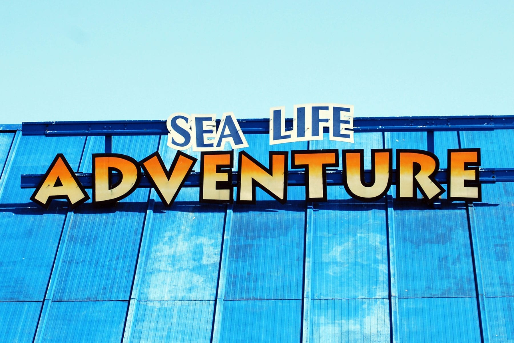 Southend-aquarium-1