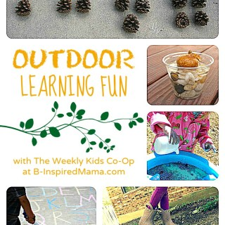Awesome Outdoor Learning with The Weekly Kids Co-Op