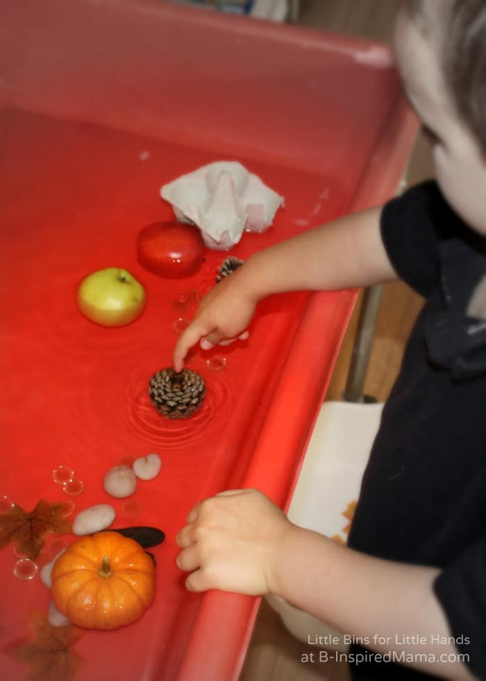 Experimenting with Fall Objects in Water for a Preschool Science Activity at B-Inspired Mama