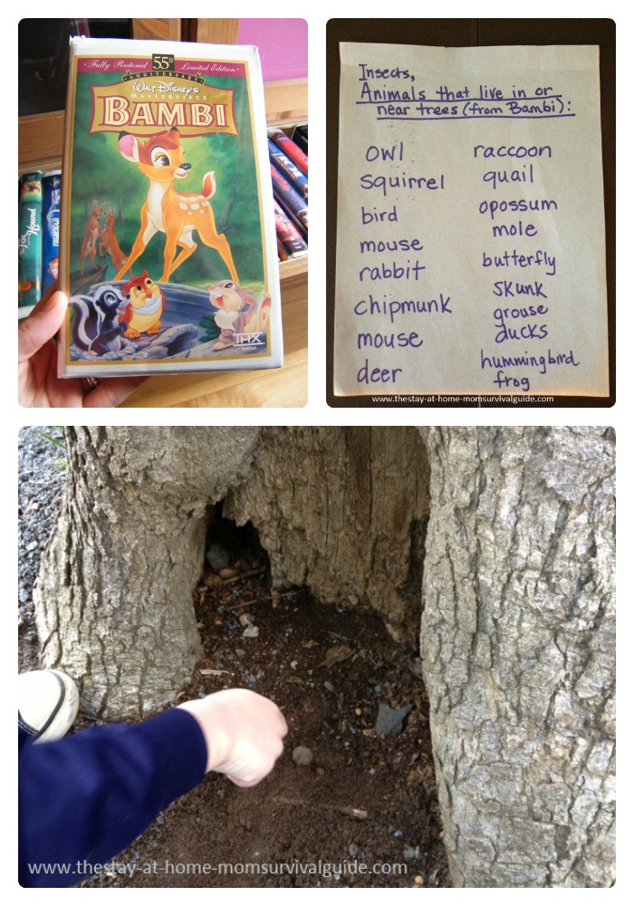 Nature Activities for Kids About Trees and Tree Animals at B-Inspired Mama