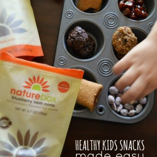 Healthy Kids Snacks Made Easy