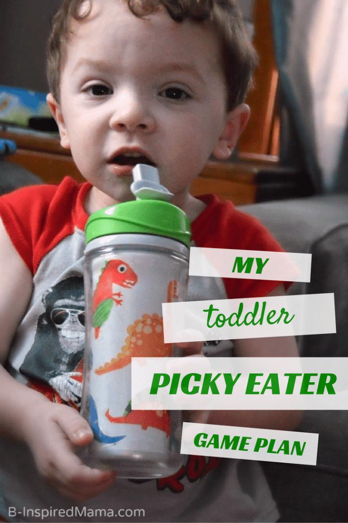 My Toddler Picky Eater Game Plan