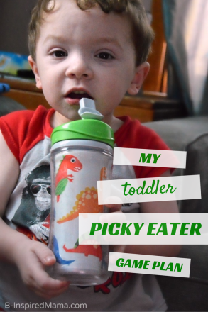 My Toddler Picky Eater Game Plan