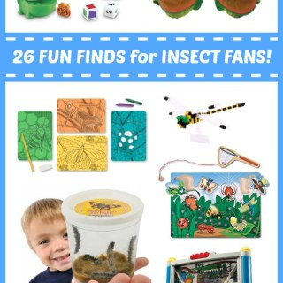Fun Finds for Kids who Love Insects
