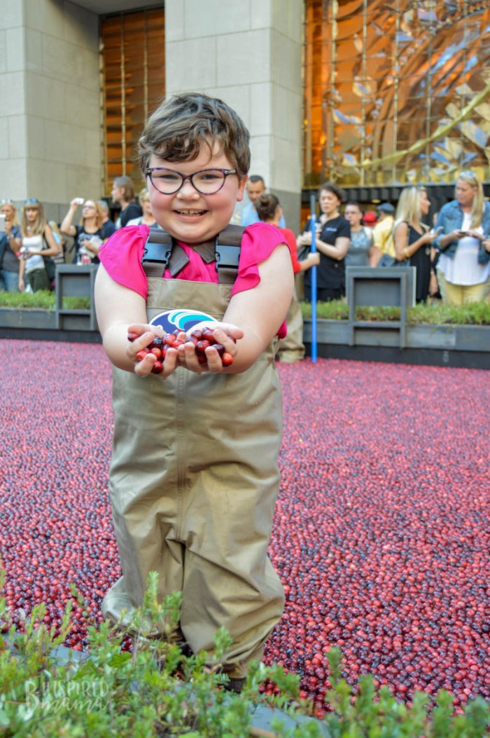 Priscilla was so stinking excited to be in the cranberry bog at the Ocean Spray #CranberryClassroom