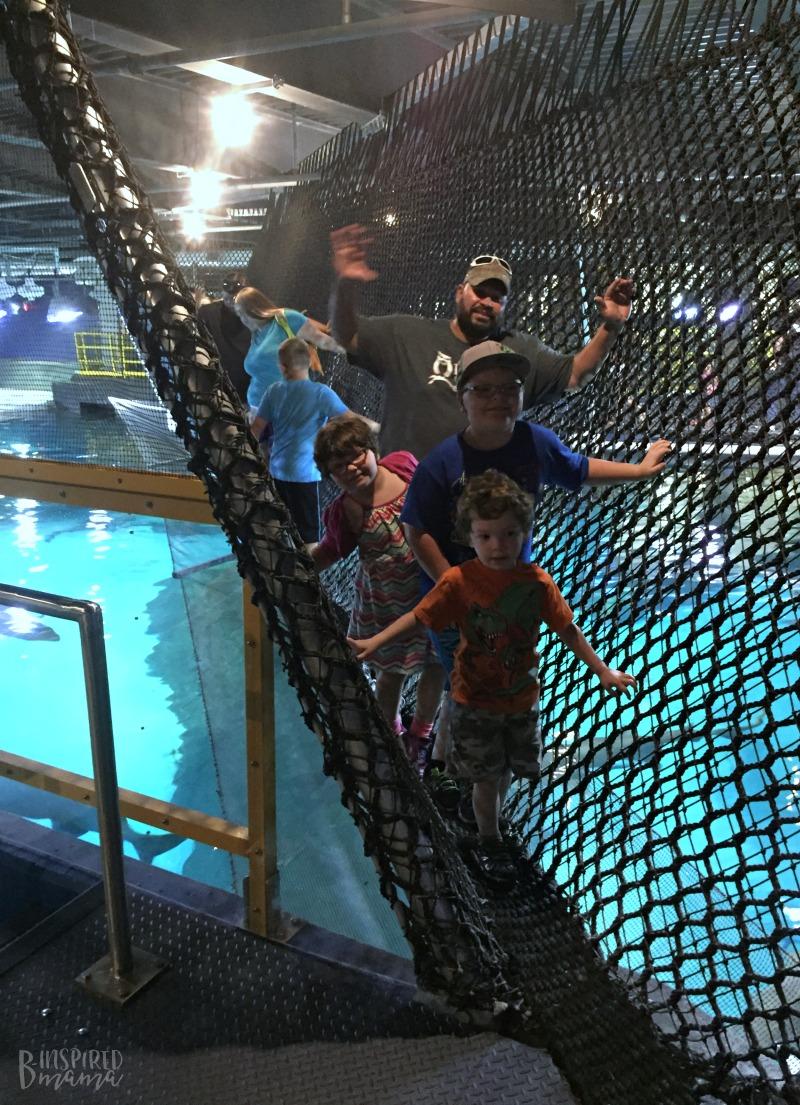 Cliff and the Kids walking through the rope bridge over sharks at Adventure Aquarium