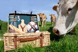 Hollandse picknick