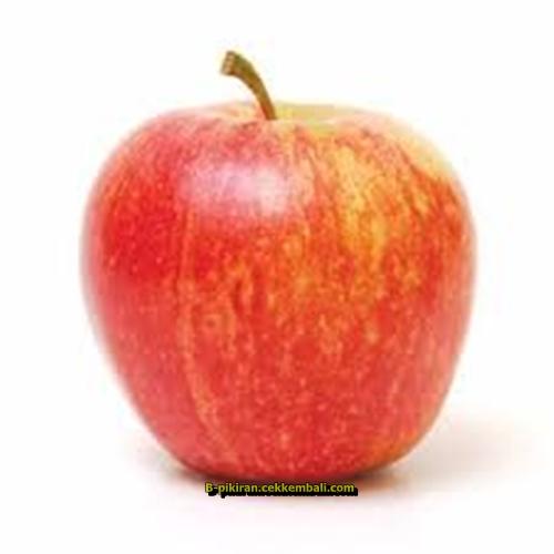 jenis jenis apel