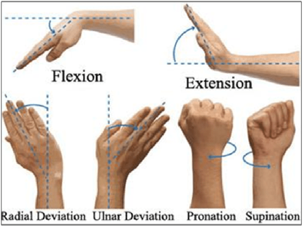 Wrist movements