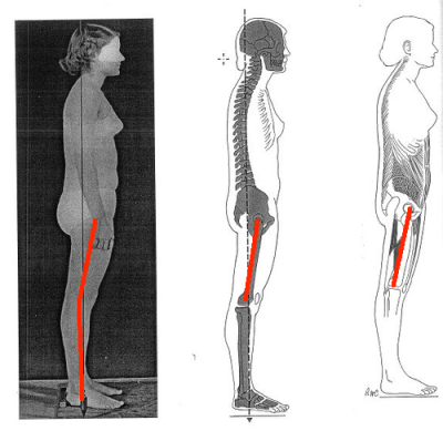 Posterior Pelvic Tilt hips extended with lines