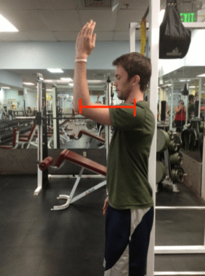 Standing arm raise from flexion with moment arm line