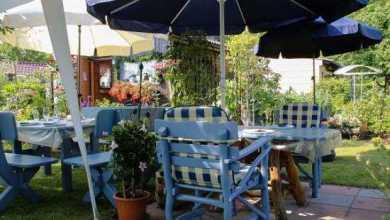 Photo of רהיטים שמתאימים לגינה: מה האפשרויות הקיימות?