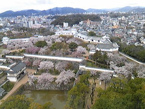 姫路城最上部からの景色