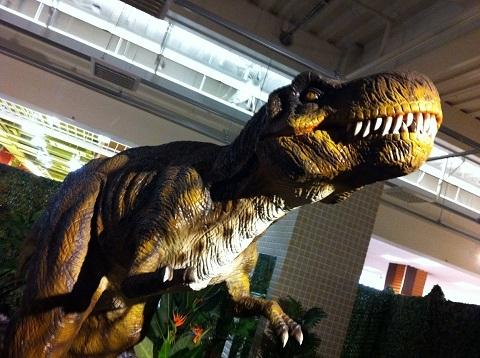 イオンタウン明石 恐竜展 ティラノサウルス(1)