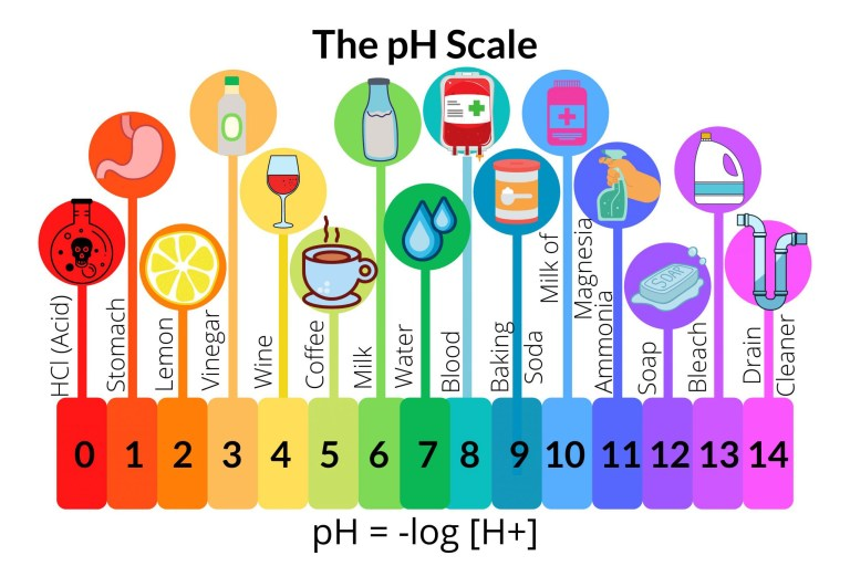 Image of the Range of the pH Scale