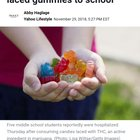 Kids accidently get high on THC gummies during gym class.