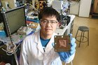 New catalyst turns waste CO₂ into valuable commodity chemical