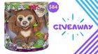 Win FurReal Cubby - The Curious Bear