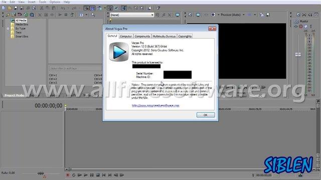 Sony Vegas Pro 12 ключ - фото 4