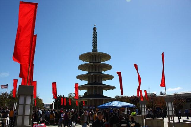 Japantown Sumo_1