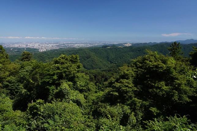 高尾山 7月 Mt. Takao, Tokyo, Japan, July