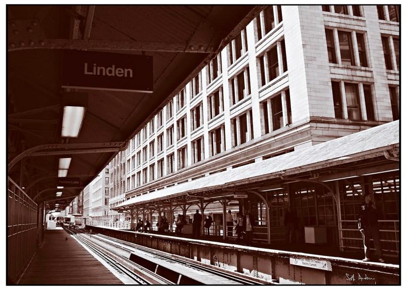 Linden - Selenium