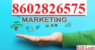 B2B LEADS Lead Generation, Bulk Database Seller, SEO, Digital Marketing Company Karnataka