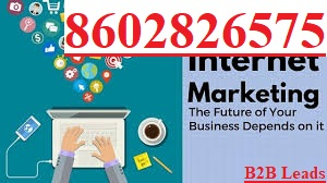 B2B LEADS Lead Generation, Bulk Database Seller, SEO, Digital Marketing Company in Chandigarh