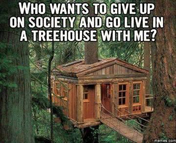 Treehouse meme