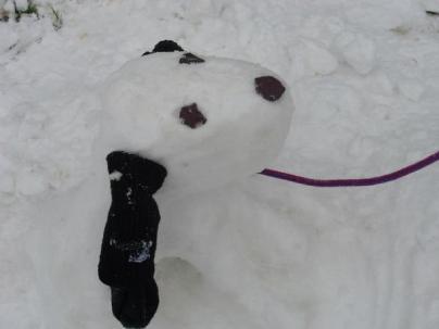 Snow dog by Hannah Jayne Hensley