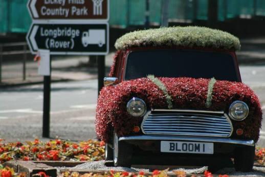 Bloom 1 - the pride of Longbridge on display last summer